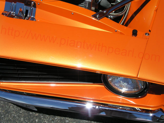 Bright Orange Diy Paint Colors
